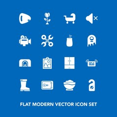Modern, simple vector icon set on blue background with coffee, carriage, motel, floral, restaurant, repair, video, blossom, baby, volume, home, money, mute, label, musical, privacy, christmas icons