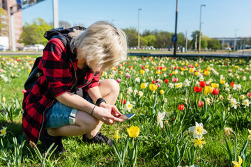 A young woman is photographing blooming flowers by her smartphone. Spring concept