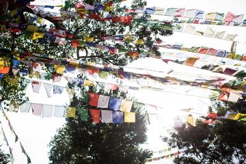 Buddhist Flags flying bright sun