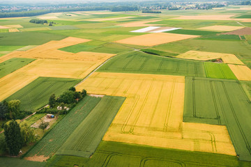 Bird eye view of land farmland and nature landscape. Aerial photography of agriculture fields in countryside.