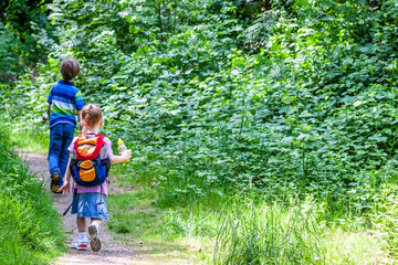 Little boy and girl hiking in the nature