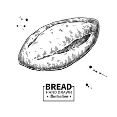 Bread vector drawing. Bakery product sketch. Vintage food