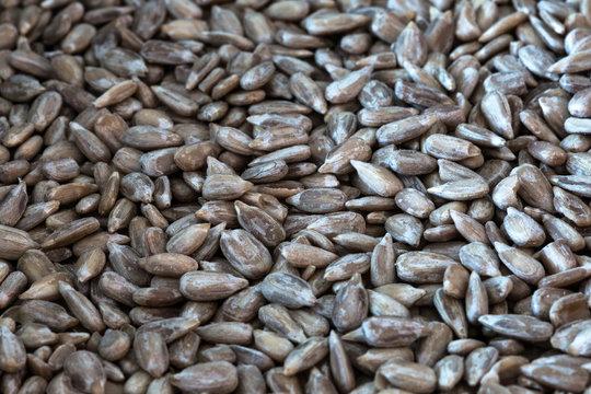 Pipas y semillas de girasol peladas y tostadas