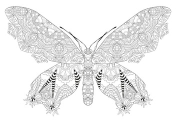 Zentangle stylized butterfly. Hand Drawn lace vector illustration