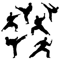 Single combats, a set of silhouettes of a karate in different poses