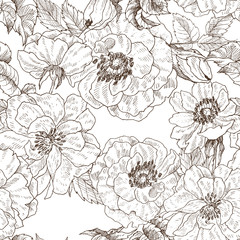 Seamless pattern of wild roses blossom branch isolated on white. Vintage botanical hand drawn illustration. Spring flowers of garden rose, dog rose. Vector design