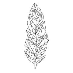 Obraz feather line  - fototapety do salonu
