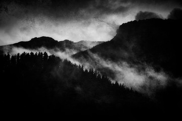 dark landscape with foggy forest at night and grungy textures