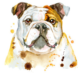 Watercolor portrait of bulldog