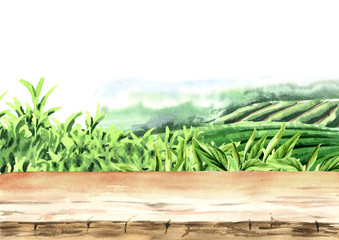 Wood floor on tea plantation. Hand drawn watercolor background