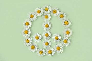 Peace symbol made of daisies flower