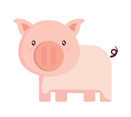 cute pig icon over white background, colorful design. vector illustration