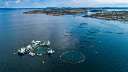 Salmon fish farm in fjord. Norway, Bergen.