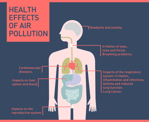 Health effects of air pollution on human body, infographic flat illustration vector