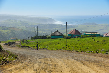 Two rondawels, traditional thatched-roofed huts on the side of a dirt road near Coffee Bay on the Wild Coast in Eastern Cape, South Africa, with a view over the Indian Ocean