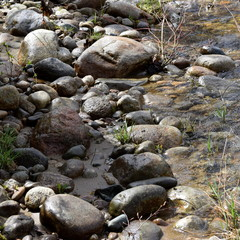 Maine River Rocks