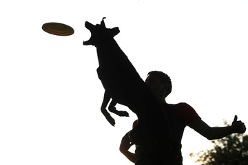 A dog is airborne as it tries to catch a frisbee next to its owner in a park in Madrid
