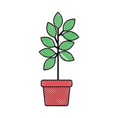 leafs plant in pot decorative icon vector illustration design