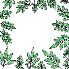 leafs plant frame pattern vector illustration design
