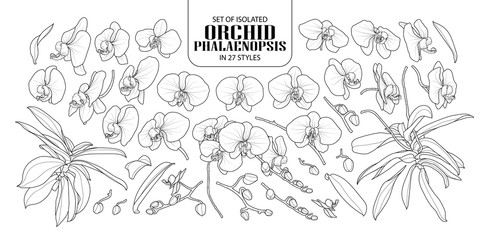 Set of isolated orchid in 27 styles.