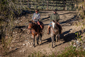APRIL 22, 2017, RIDGWAY COLORADO: Cowboys ride horse on Centennial Ranch, Ridgway, Colorado - a cattle ranch owned by Vince Kotny