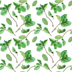Mint Branch and Leaves Pencil Drawing Seamless Pattern