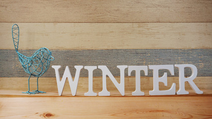 winter alphabet letter with space background
