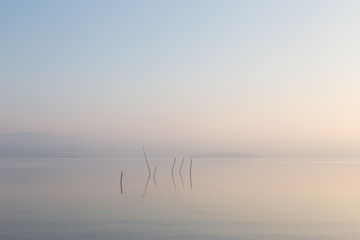A very minimalistic view of a lake at dawn, with soft light, war Wall mural