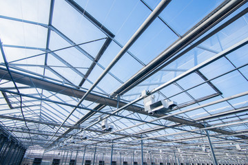 glass roof with lighting equipment in a modern greenhouse