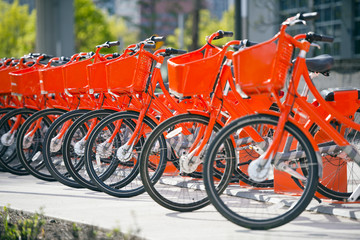 Portland bikes сity offers fans healthy lifestyle with orange bikes for trip in the city stand in row on rental network parking lot