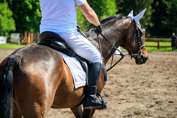 Unrecognizable horse rider on an equestrian event
