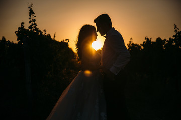 Silhouettes bride groom standing on the vineyard and tenderly looking at each other at sunset. Concept of love and family