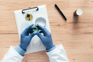 Overhead view of laboratory technician analyzing petri dish bacterial cultures
