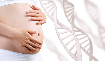 Young pregnant woman caress belly among DNA stem.