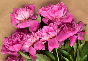 A bouquet of pink peonies on wrapping paper. festive mood. celebration.