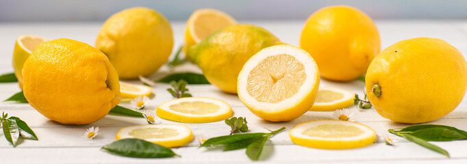 Lemons whole and sliced spread on the Board, decorated with herbs and daisies. panorama