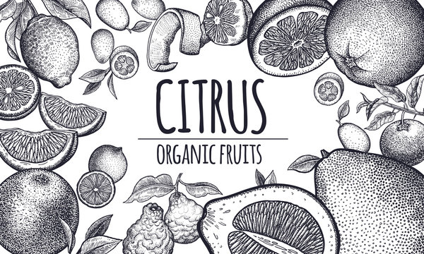 Poster with citrus fruits.