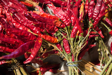 Red hot pepper background, Dried chili peppers in bunches