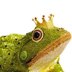 elegant designed diamond in frog on white background
