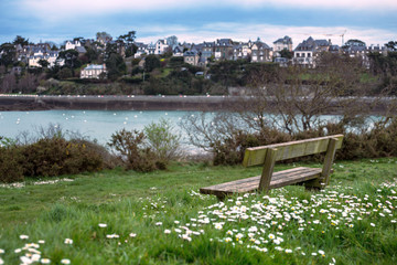 bench with a beautiful view