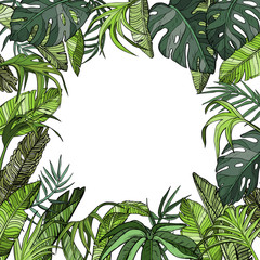 Tropical background with palm leaves, jungle plants