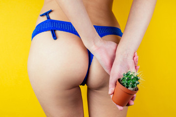 a woman in panties is holding a green cactus in a brown pot and a razor. The concept of depilation, epilation and removal unwanted hair in the bikini zone