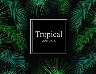 Vector tropical exotic leaves summer frame banner