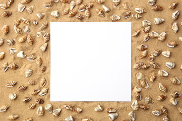 White empty frame on sand with sea shells as background. Blank card on beach sand with small shells texture.