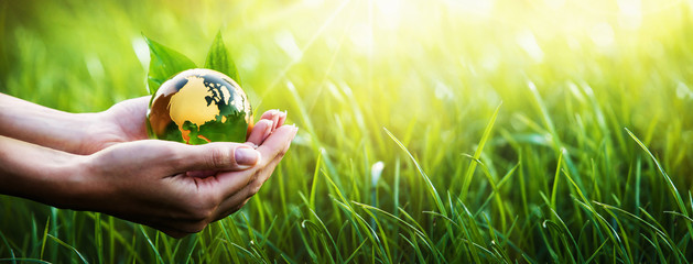Green Planet in Your Hands. Environment Concept Fototapete