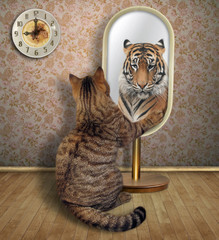 The cat looks at in the mirror. It sees the reflection of a tiger there.