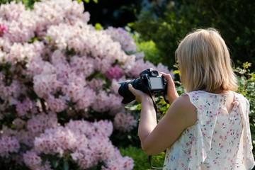 Frau fotografiert Rhododendron