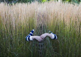 Hands hugging a stalk of tall grasses in the field Wall mural