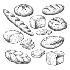 Bread vector drawing. Bakery product sketch. Vintage food