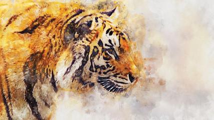 watercolor illustrations tiger
